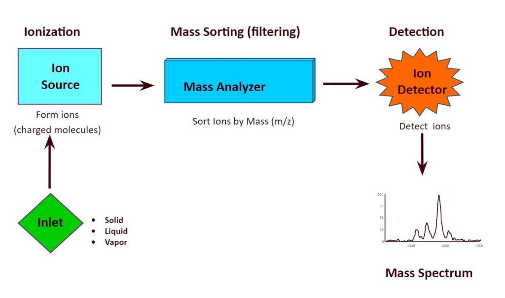 Intact mass analysis by HRMS