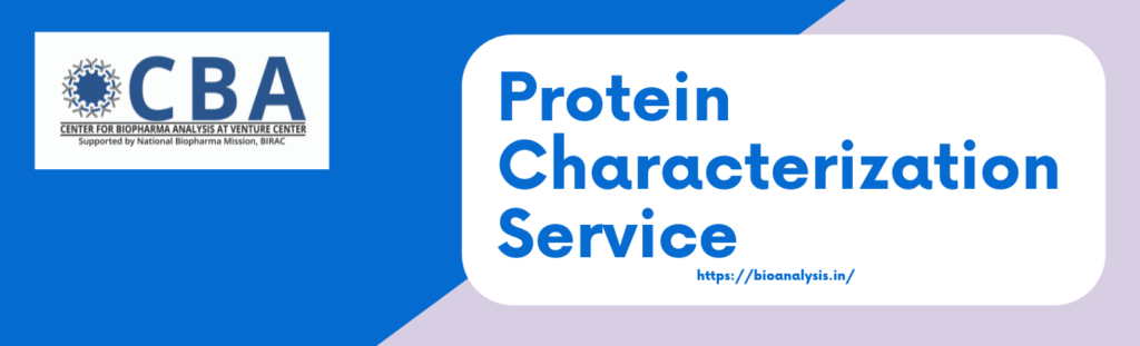 Protein Characterization Service